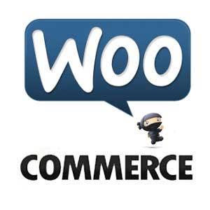 Nascondere prezzi in WooCommerce