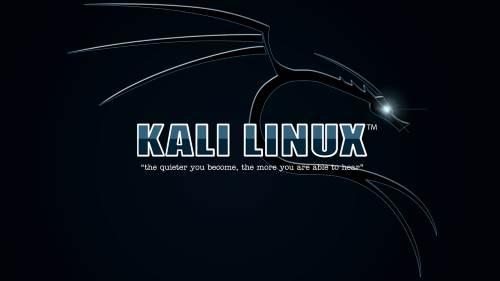 Come utilizzare Kali Linux