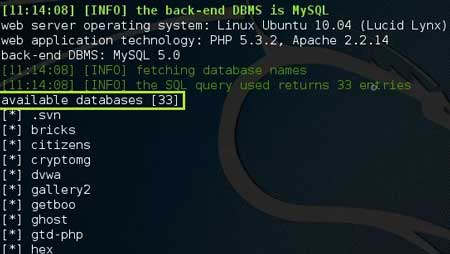 SQL Injection con SQLMap -Database