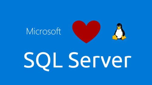 Sql Server 2019 in Linux
