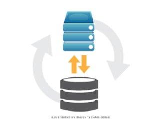 Restore database in Ubuntu